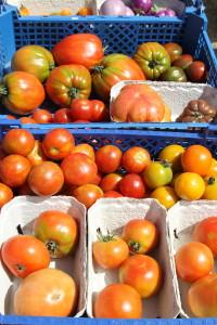 15-07_Agri-Tomaten
